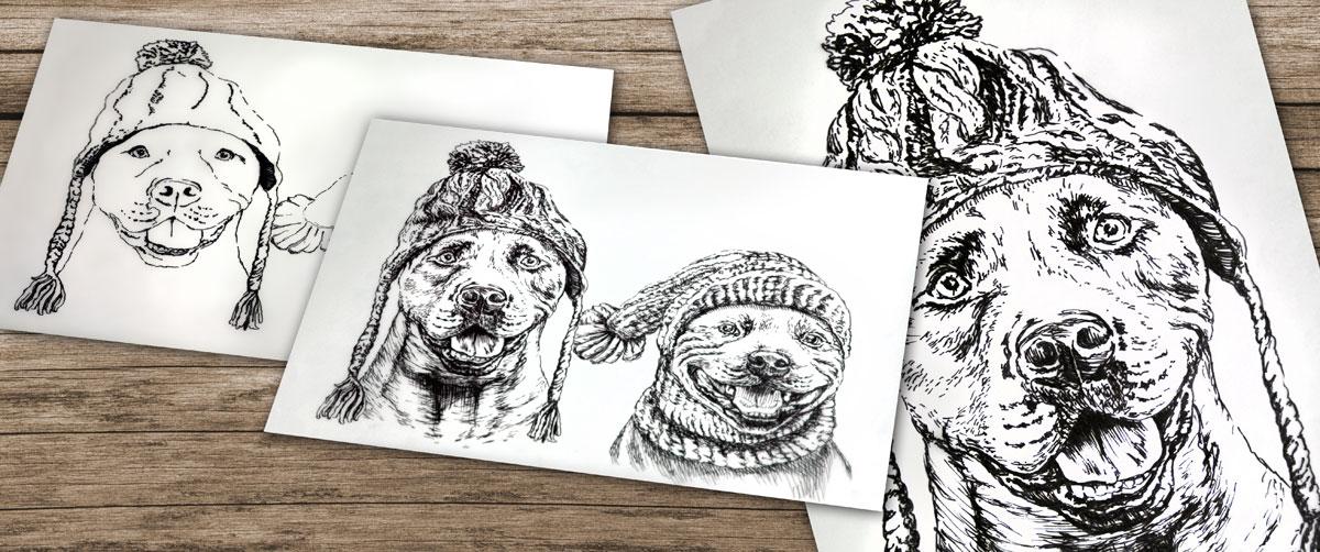 nabídka tvorby perokresby, na obrázku jsou psi v čepici