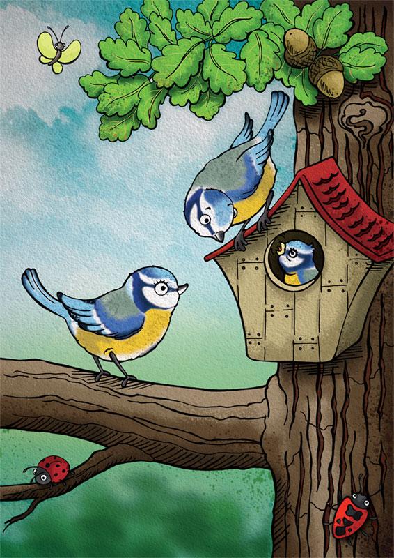 sýkorka modřinka, dub, ptačí budka, beruška, broučci, motýl